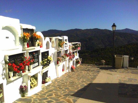Mesón La Molienda: Benalauria Village