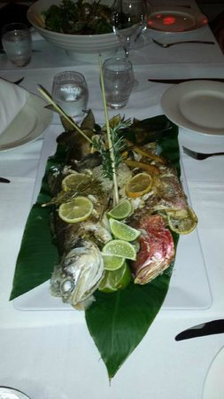 Paradise Sport Fishing Adventures: Salmon and Fingermark cooked by hotel
