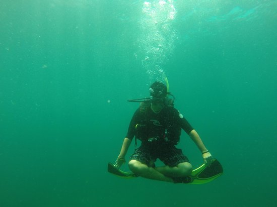 Diverse Borneo: at one of the dive site