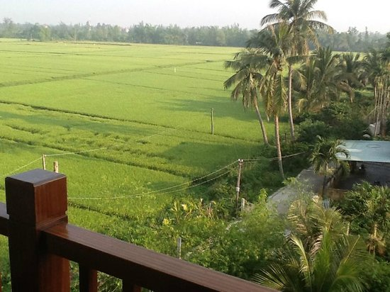 Essence Hoi An Hotel & SPA: view from block A out to rice fields that are beside the hotel