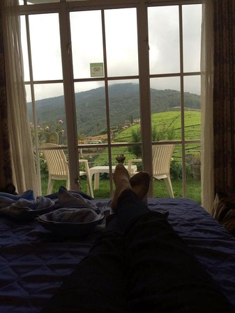 Misty Hills Boutique Cottage B&B: Amazing view from the room