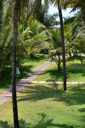 Marbela Beach Resort : View of walk to bar/beach from rooms