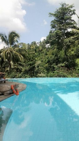 Ayung Resort Ubud: Swiming pool view