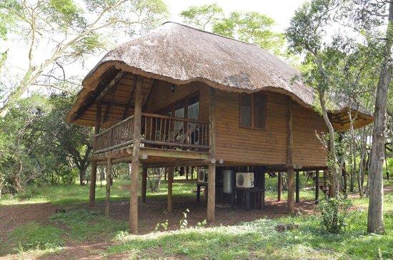 Zululand Tree Lodge: Tree-Lodge