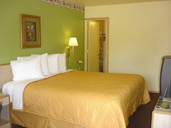 Value Inn Motel : 1 king size non smoking room