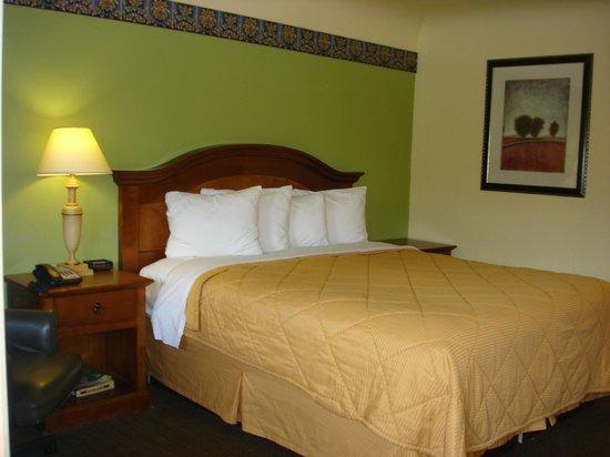Value Inn Motel : 1 king size bed