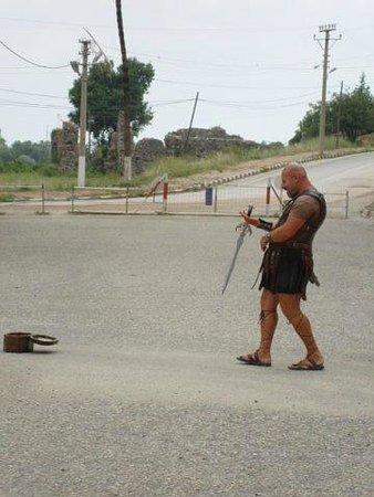 Greek Amphitheater: местный попрошайка