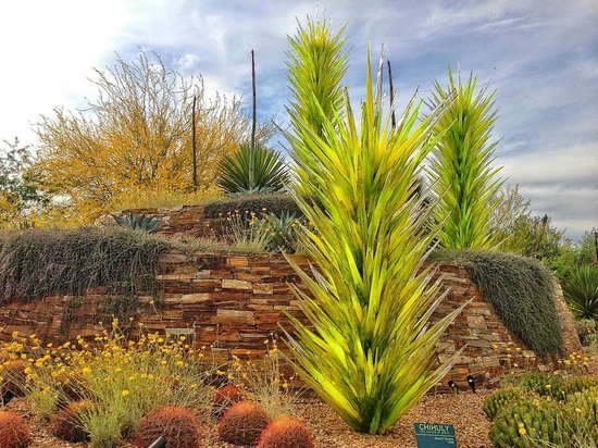 desert botanical garden chihuly sculpture yucca desert towers - Desert Botanical Garden