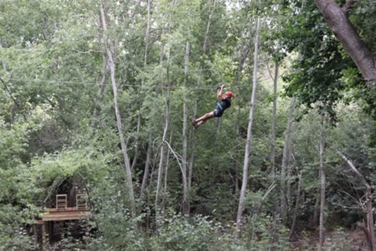 SA Forest Adventures: 18 meters from the ground