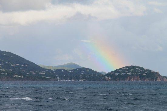 Cruise Ship Excursions - Champagne Catamaran : more...