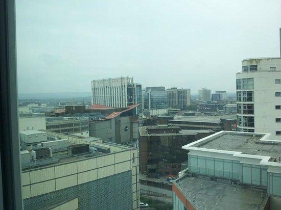 Radisson Blu Hotel, Cardiff: Not so great view.