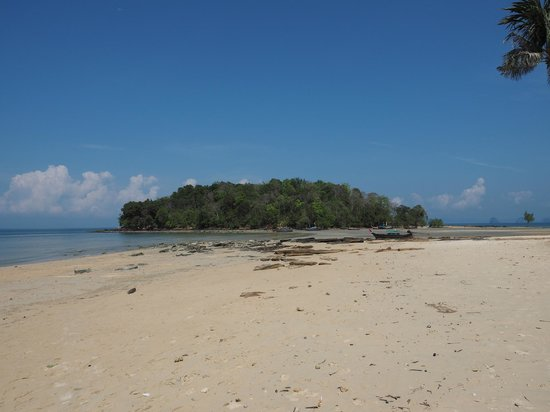 Nakamanda Resort & Spa : beach