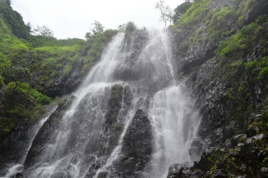Amboli: Up close at the Waterfall
