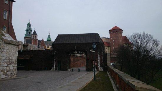 Château roya du Wawel : Ворота