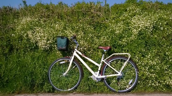 Spring bike ride into Colyton