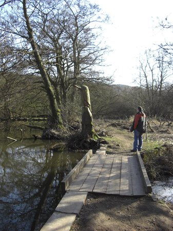 Etherow Country Park: Nature reserve