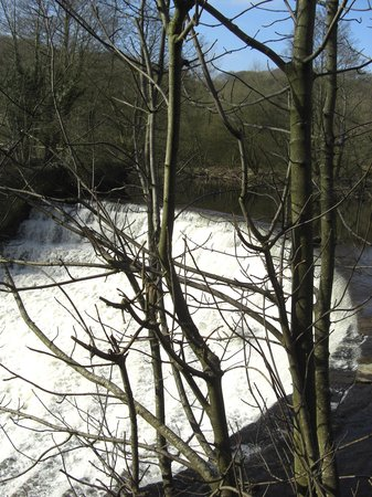 Etherow Country Park: Weir at Etherow