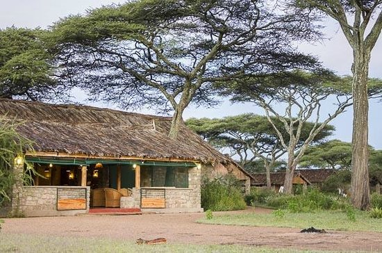 Ndutu Safari Lodge: Main Lodge Area