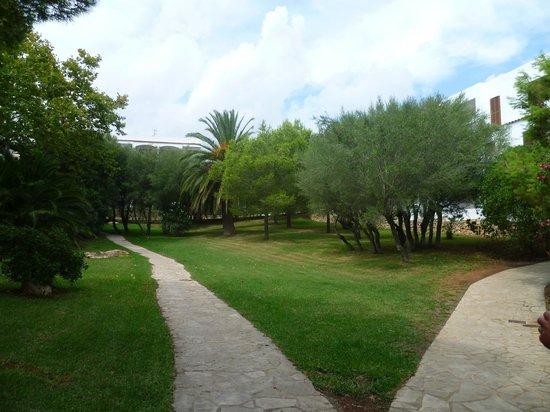 Palia Puerto Del Sol: une partie du jardin