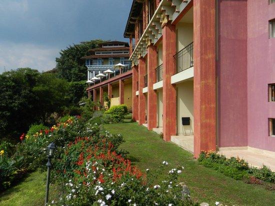 Amaya Hills : Jardins devant ma terrasse
