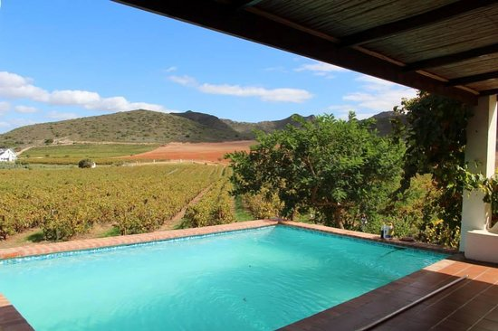 Orange Grove Farm : View from our cottage