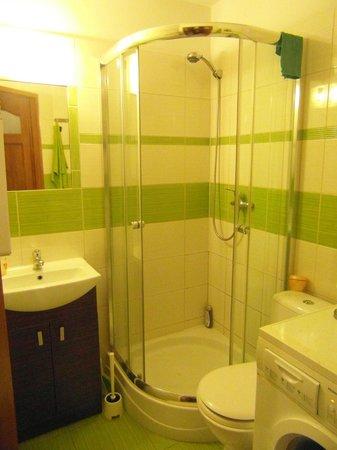 Appena Hostel : baño del apartamento