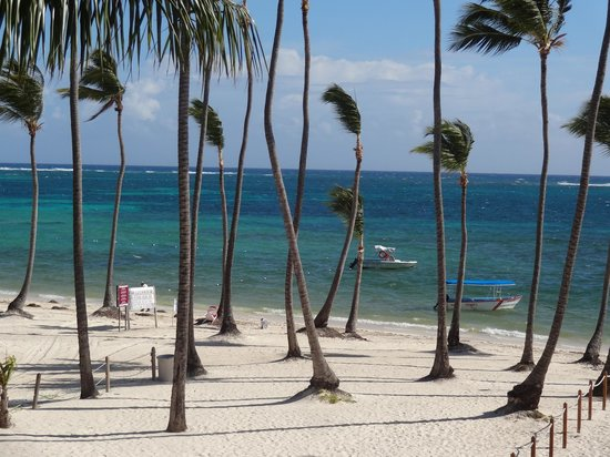 Dreams Palm Beach Punta Cana: plage