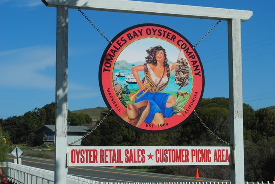 Tomales Bay Oyster Co. : Great barbecue, sunny day
