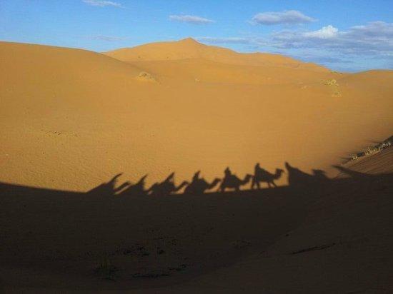 Fes Desert Tours: Shadows:)