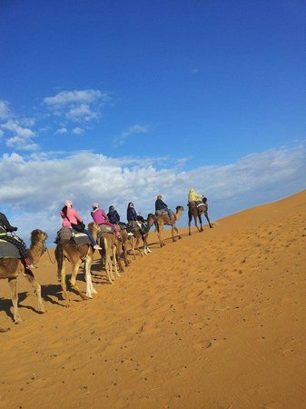 Fes Desert Tours: Trip with the camels:)