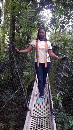 Obudu Mountain Resort: Canopy walk