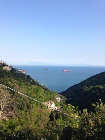 Il Cavaliere dei Conti : View on the Amalfi coast from the agritourism