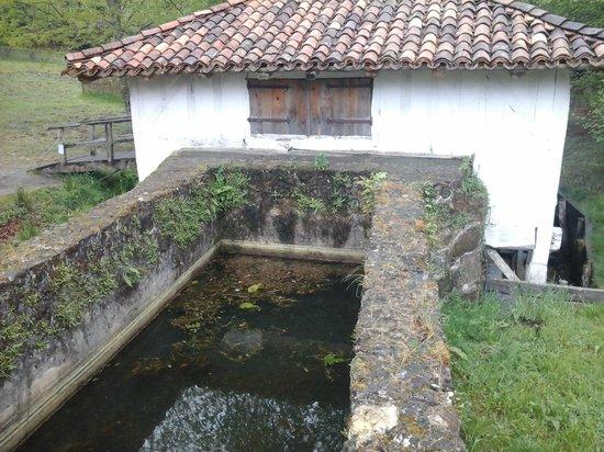Écomusee de Marquèze : l eau du moulin