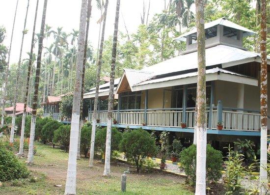Aranya Jungle Resort: Aranya Resort