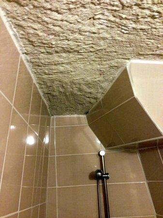 Melek Cave Hotel: Toilet Ceiling
