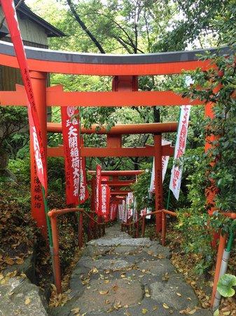 Dazaifu Temman-gu: 奥の院に行く途中の鳥居。自然と日本情緒がいいです。