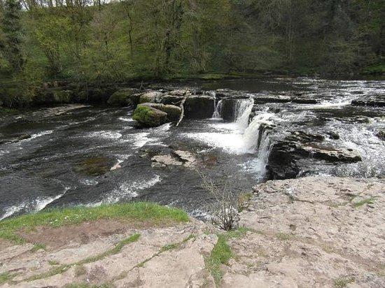 Aysgarth Falls: Upper Falls