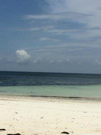 Zawadi Residence: spiaggia