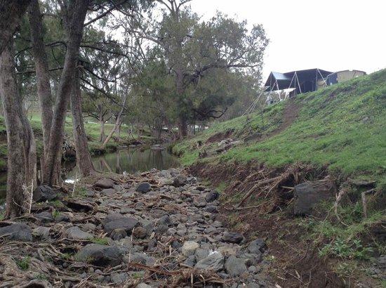 Bestbrook Mountain Resort : the creek