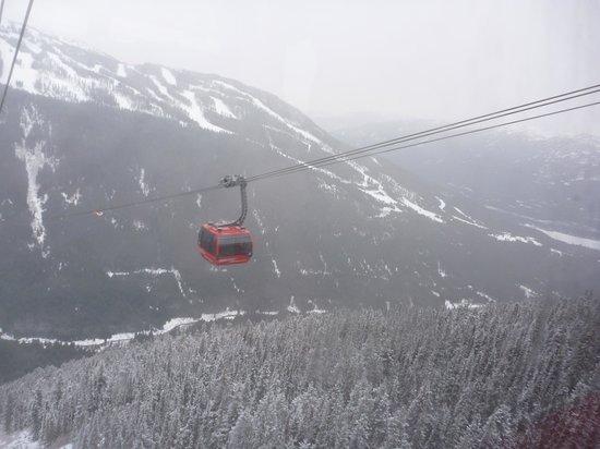 Peak 2 Peak Gondola: View of passing gondola from gondola