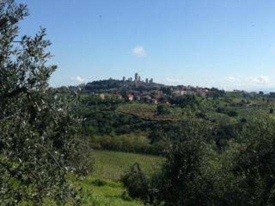 La Fornace di Racciano : San Gimignano fotografata dall'agriturismo