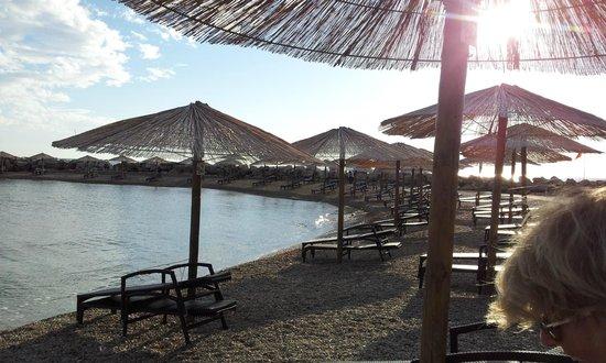 Aminess Maestral Hotel : la spiaggia privata