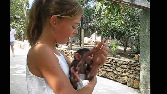 Zoo Castellar: Monkey business