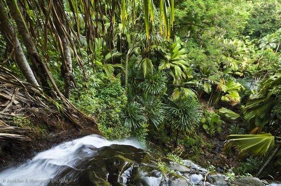 玛依谷地自然保护区