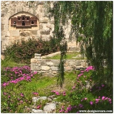 Castle of St. Peter : this picture captures few things I love: Hot pink, stones, wood and nature.