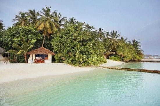 frágil paraguas Mil millones  Private beach - Picture of Nika Island Resort & Spa, Kudafolhudhoo Island -  Tripadvisor