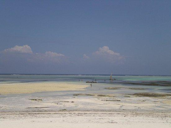 Veraclub Zanzibar Village: Spiaggia di Kiwengwa con bassa marea