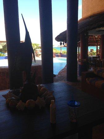 Villa La Bella: Cigar view after breakfast