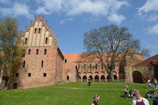 Kloster Chorin: Bilck zum Kosterhof, mit einem der schönsten Bergahorne Brandenburgs