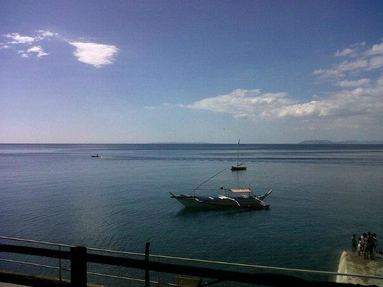 Sail Anilao: view from our room